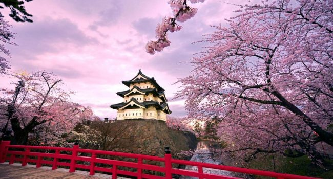 Обиколка на Япония за цъфтежа на вишните – Пролет 2019
