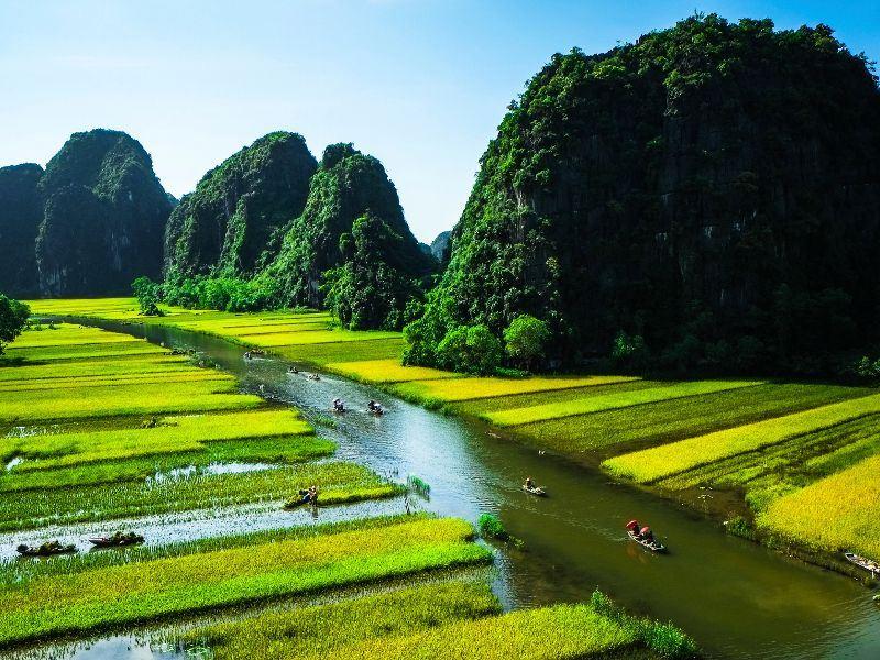 rice-field-and-river-in-ninh-binh-vietnam